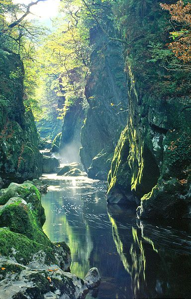 Fairy Glen, Betws-y-Coed, Wales.  Some dear friends showed us this place and even found a little fairy hat for my daughter that one of the fairies left behind;)