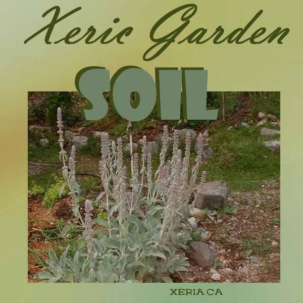 Best 25 Soil Type Ideas On Pinterest Types Of Soil Garden Soil And Vegetable Garden Soil