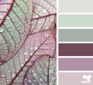 color dew | design seeds | Bloglovin
