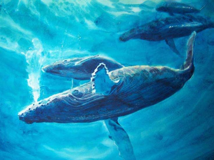 Whales - Humpback Blues