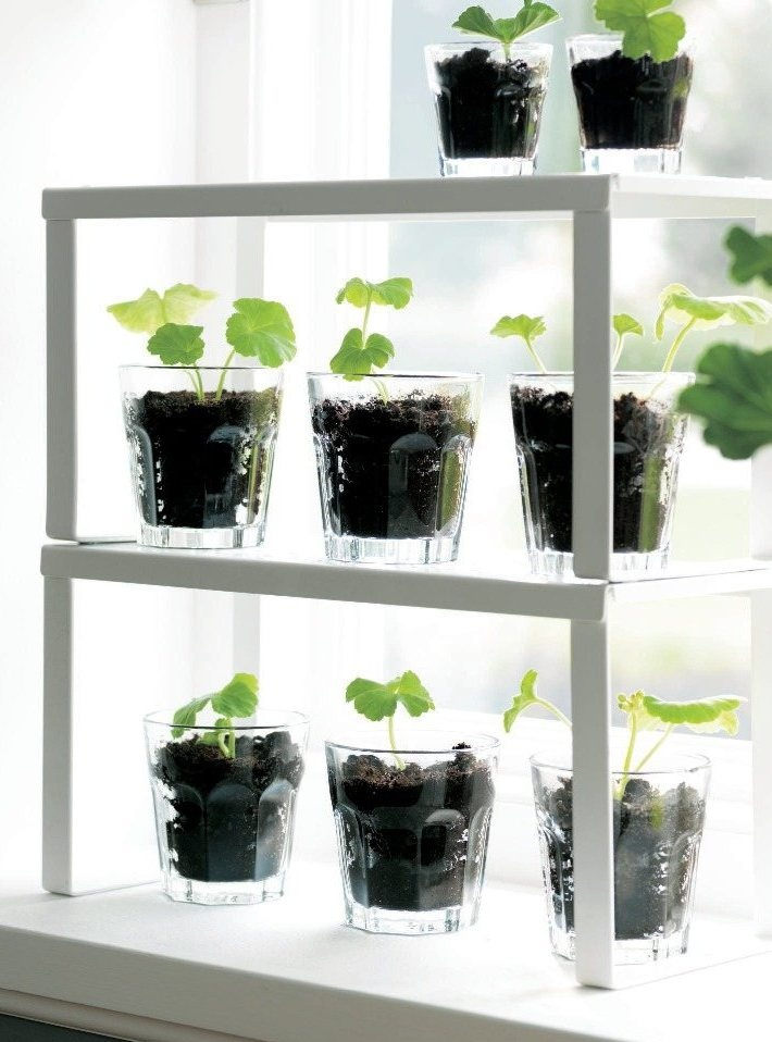 Urban gardening ikea magazine however small your for Indoor gardening nyc