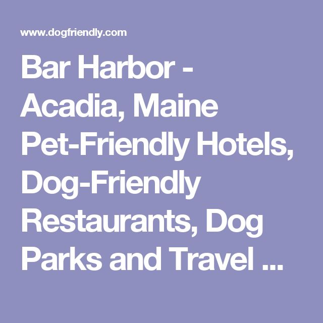 Bar Harbor Acadia Maine Pet Friendly Hotels Dog Restaurants Parks And Travel Guide Pinterest