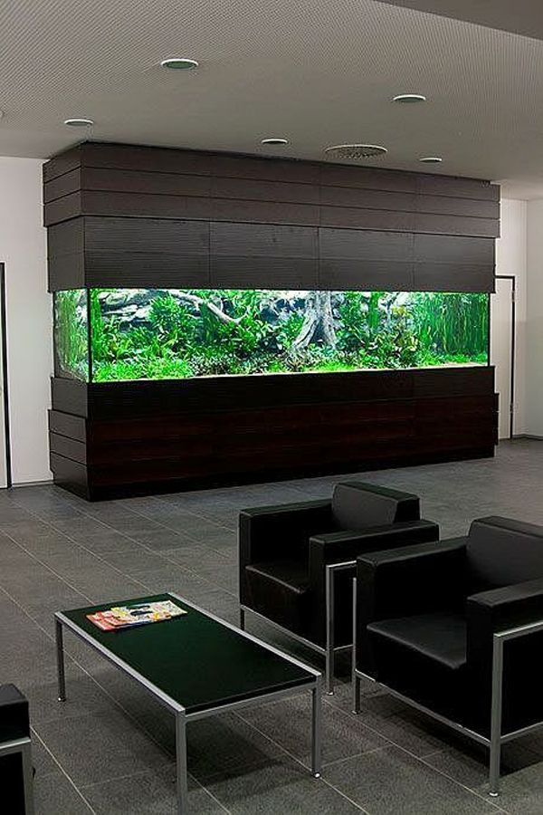 Best 25 aquarium design ideas on pinterest aquarium for Aquarium interior decoration
