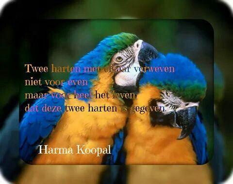 Twee harten met elkaar verweven Niet voor even Maar voor heel het leven Dat deze twee harten is gegeven.