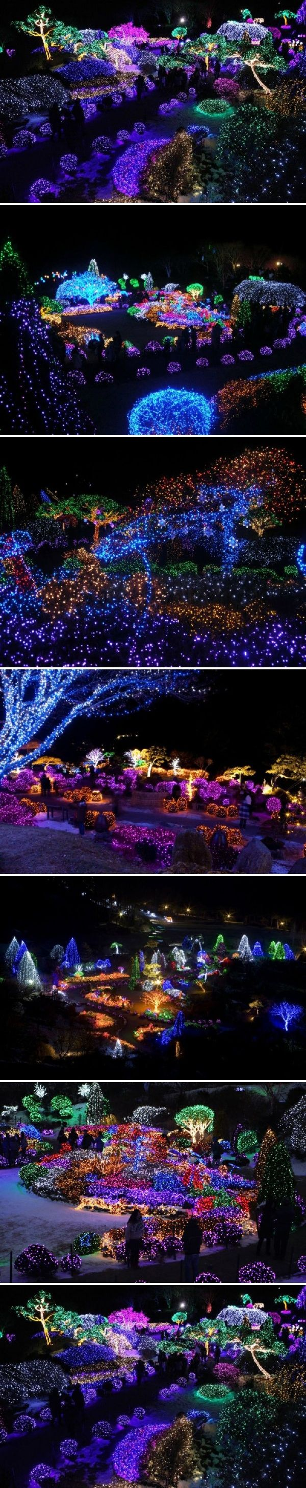 Christmas Festival, Garden of Morning Calm in South Korea                                                                                                                                                                                 More