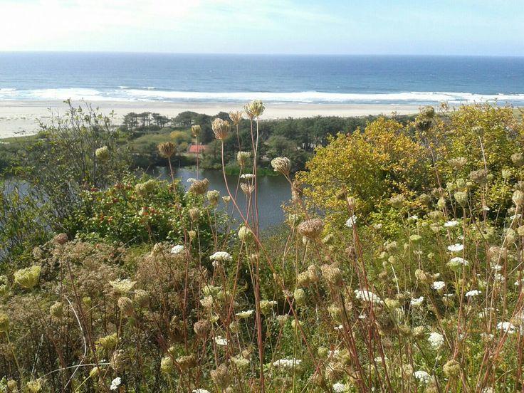 Mooi uitzicht langs de kust van Oregon