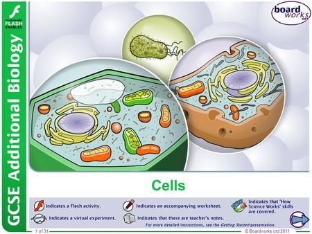 Boardworks GCSE Additional Science: Biology> in 2020 ...