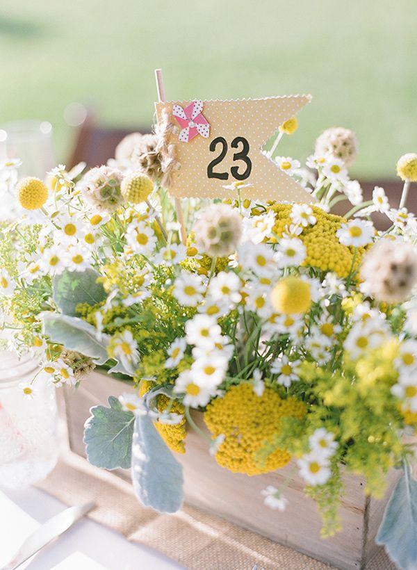 daisy centerpiece, photo by Valentina Glidden Photography http://ruffledblog.com/brookside-equestrian-wedding #weddingcenterpieces #flowers