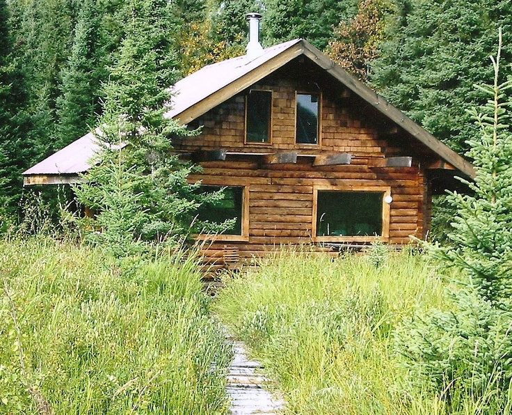 Our rustic cabin on Shirley Lake in Willow Alaska. A lake  full of loons, grebs, eagles, ducks, hawks and trout.
