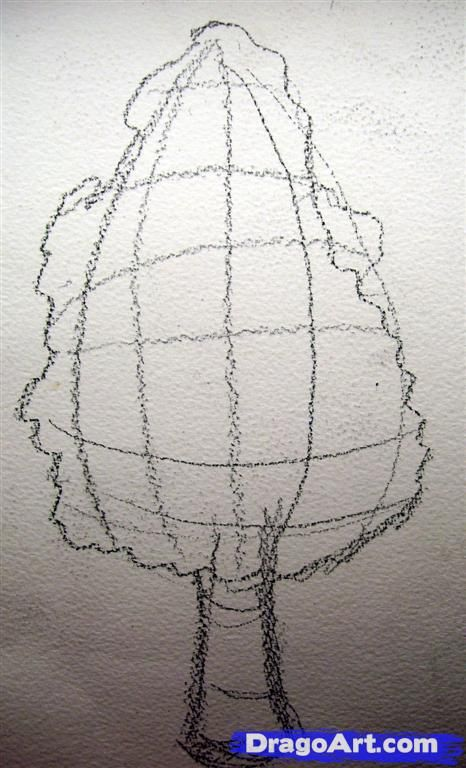 how to draw a realistic bush