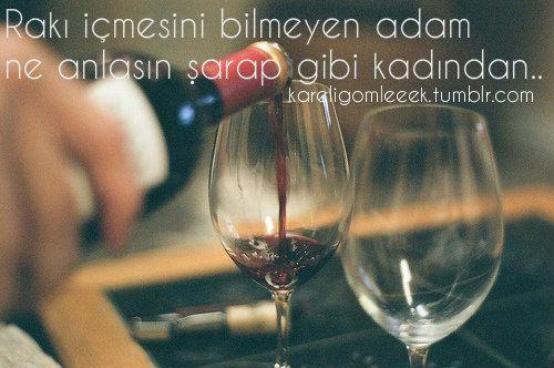 Rakı içmeyi bilmeyen adam ne anlasın şarap gibi kadından?