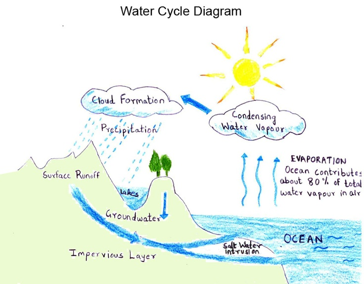 water cycle diagram projects pinterest. Black Bedroom Furniture Sets. Home Design Ideas