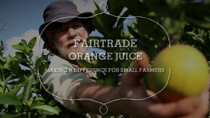 Sergio's family have been farming oranges used in your orange juice for over 50 years in Brazil. Fairtrade provides the stability they need to continue and grow.…