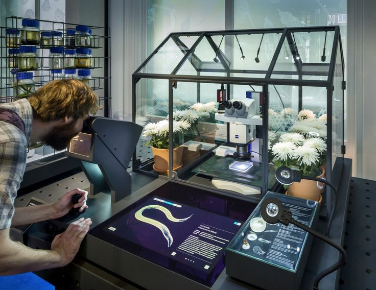 Artis Design Group : Best images about exhibition science technology