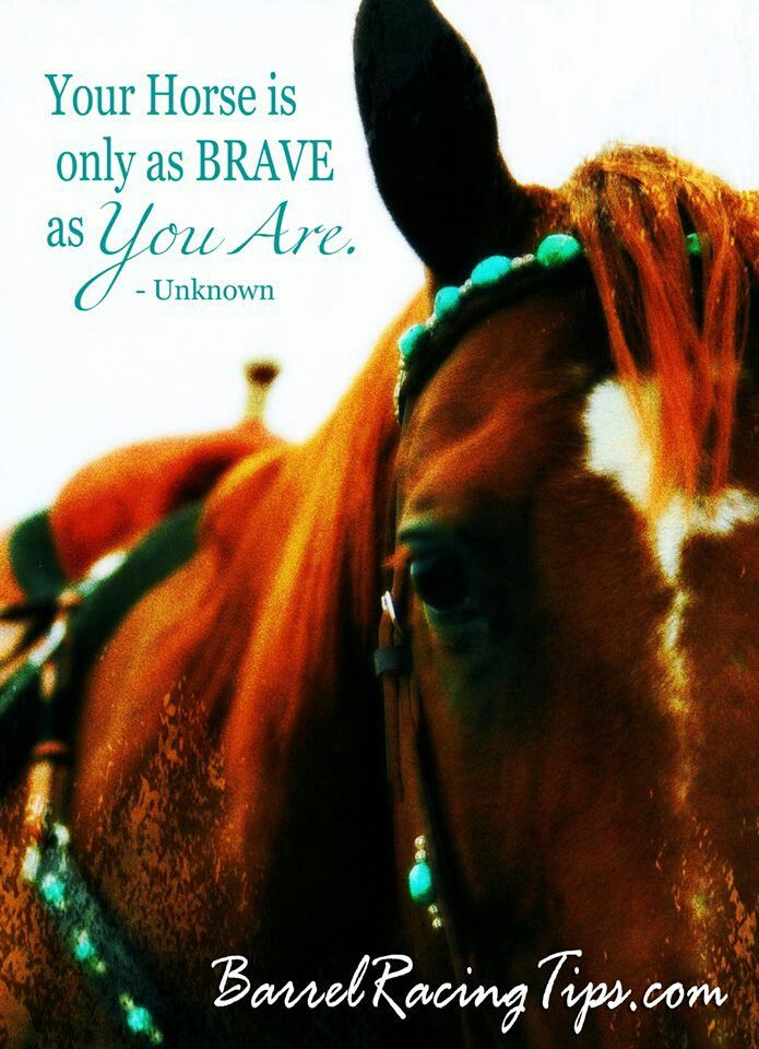 It's almost scary how similar a horse and rider act. We fit together like pieces to a puzzle.