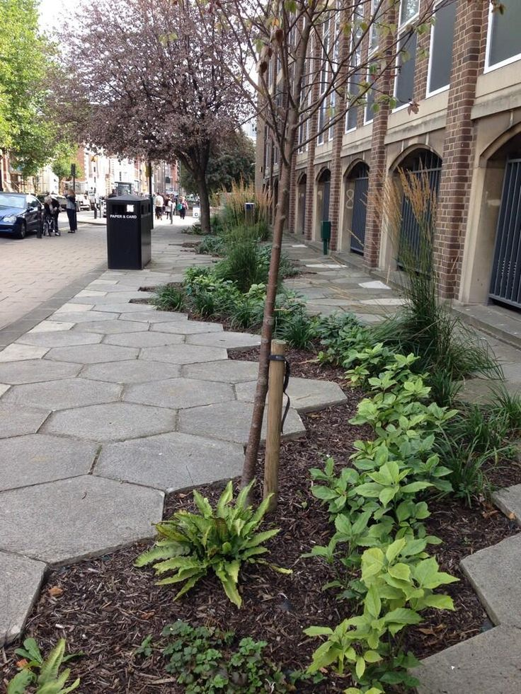 pavimento hexagonos jardinera