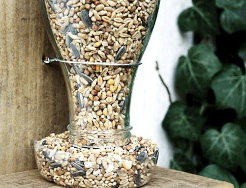 A DIY Bird Feeder: Repurpose Your Old Glass Bottles — esprit cabane