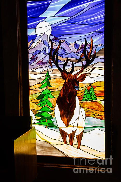 Elk Stained Glass Window:  See more images at http://robert-bales.artistwebsites.com/