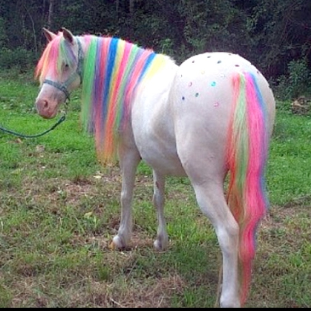 My Little Pony Hair Dye
