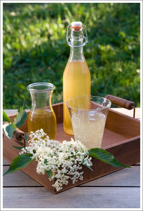 Elderflower syrup (berry lovely blog)