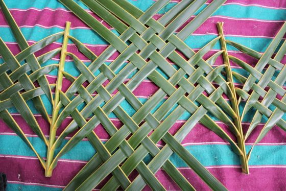 palm frond weaving