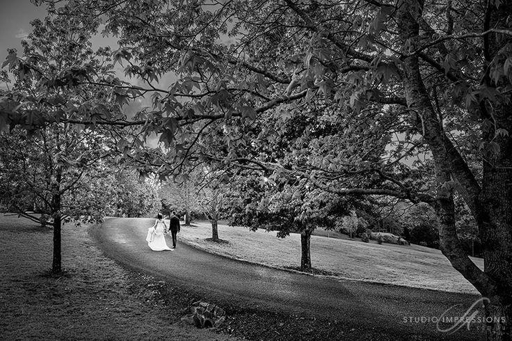 Spicers-Clovelly-Wedding-55
