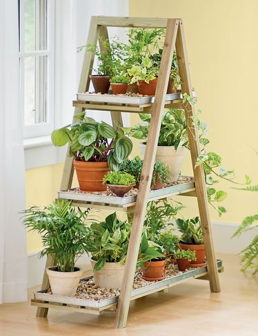 New plant stand for seedlings on the porch. I could use an old ladder and use old boards to make this stand Chabby Chic. Also would be good for outdoors with green beans, cucumbers, strawberries, etc.