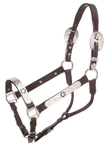 And one of these :) Royal King Silver Stars Halter With Lead #winyourwishlist