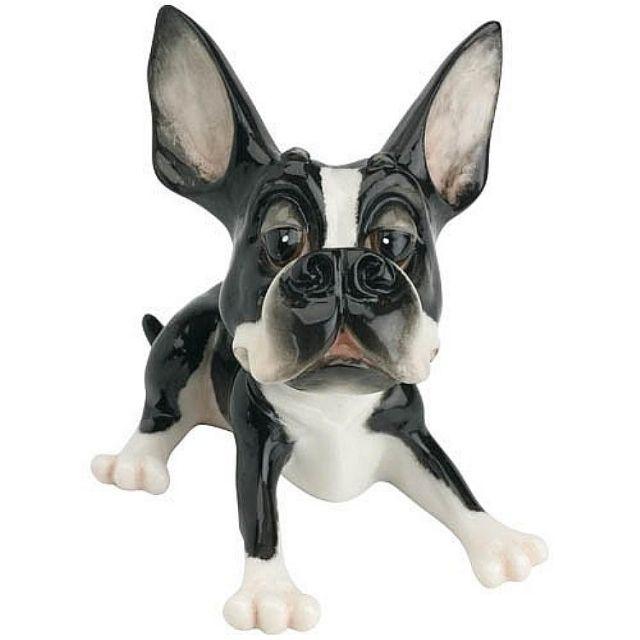 Hundefigur Französische Bulldogge Little Tarquin  Tarquin zeigt sich humorvoll mit allem, was eine echte Französische Bulldogge zu bieten hat - sein liebenswerter Charakter ist ihm ins Gesicht geschrieben. Eine Hundefigur aus dem Hause Arora Design, die zum Sammeln verführt. Mit viel Liebe zum Detail wurde die Hundefigur Französische Bulldogge aus einem speziell entwickelten Keramikstein gefertigt. Eine aufwendige Glasur verleiht Little Tarquin einen schimmernden Hochglanzeffekt.