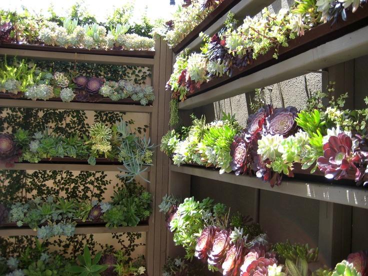88 Best Indoor Gardening Images On Pinterest Plants Gardening And Indoor Gardening