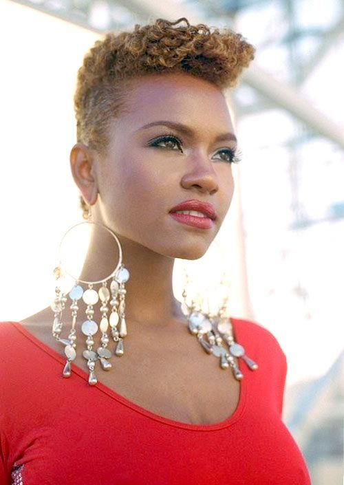 Superb 1000 Images About Short Hairstyles For Black Women On Pinterest Hairstyles For Men Maxibearus