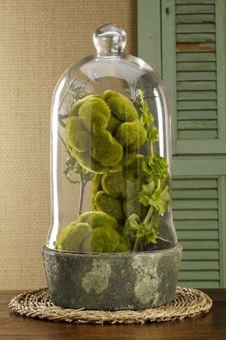 Okouzlující interiérové dekorace z mechu