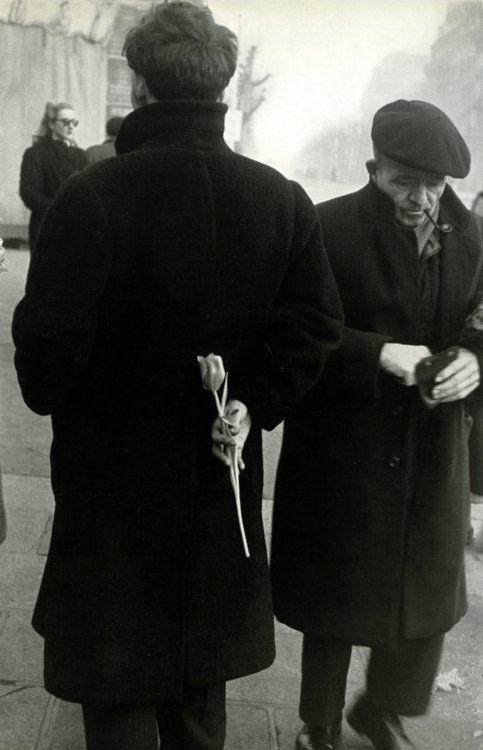 Robert Frank Tulip, Paris, 1950.