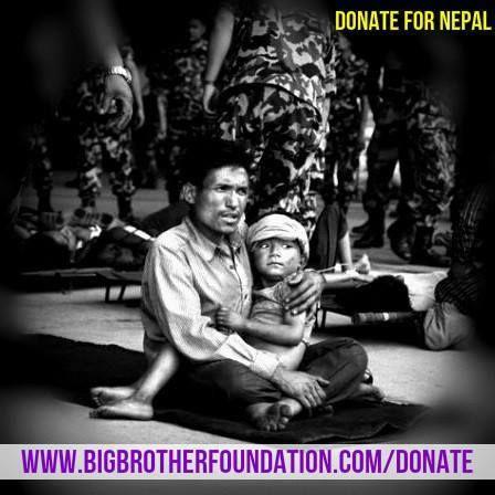 #Nepal needs your help...  Donate here: www.bigbrotherfoundation.com/donate  #PrayForNepal #WeStandWithNepal #NepalEarthquake