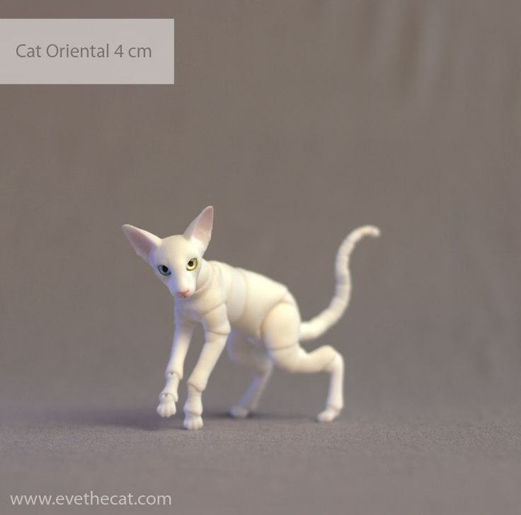 1 | by BJD Pets (dolls.evethecat.com)