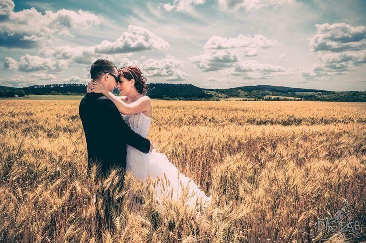 #vintage #love #wedding, #wheat http://www.digilab.hu