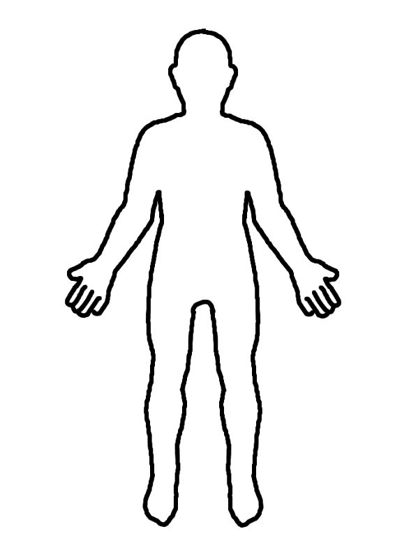 how to draw body diagrams