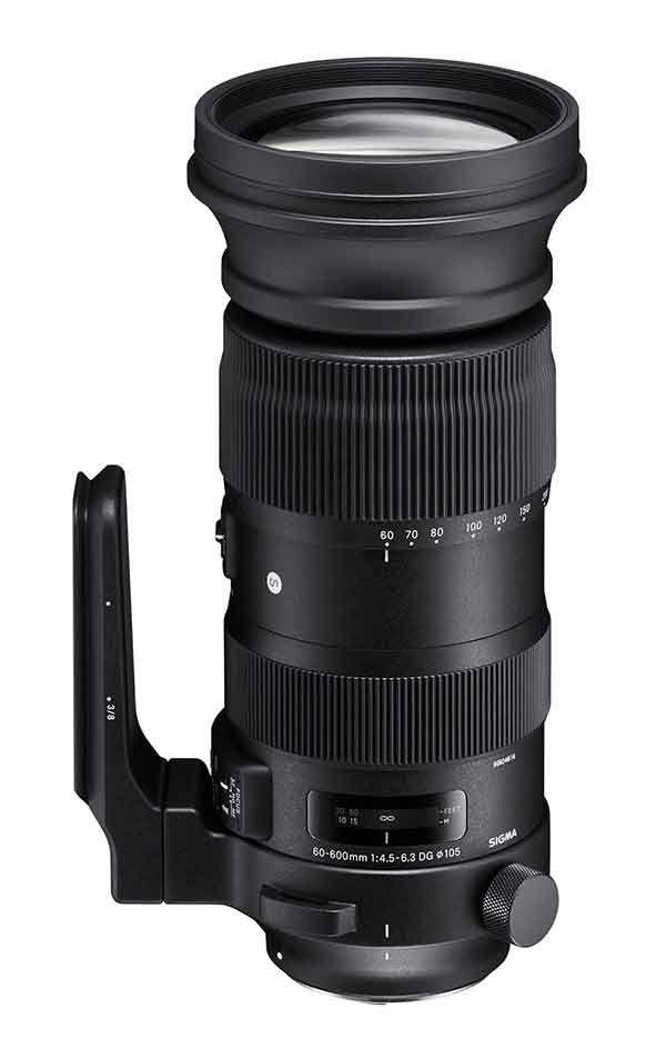 Sigma 60 600mm F5 6 3 Dg Os Hsm Sport Lens Sigma Lenses Canon Lens Camera Nikon