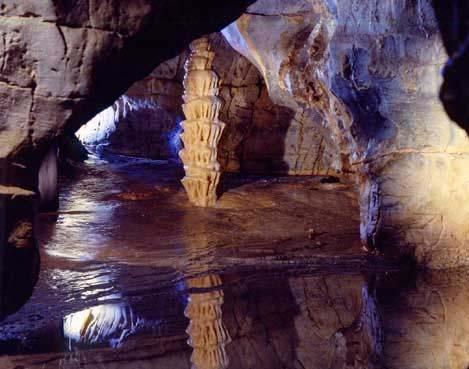 Grotte di #Toirano, vicino a #PietraLigure , #Liguria