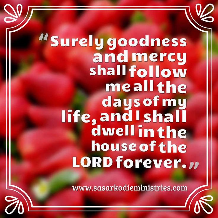 Surely goodness and mercy shall follow me all the days of my life and I shall dwell in the house of the LORD forever.(Psalm 23:6  ESV)  VISIT HERE FOR MORE: http://ift.tt/2gk8Men  #Bible #God #Love #Redeemed #Saved #Christian #Christianity #Chosen #Jesus #Truth #Praying #Christ #JesusChrist #Word #Godly #Angels #Cross #Faith #motivation #motivationalquotes #Inspiration #JesusSaves #positivevibes #gospel #Worship #Holy #HolySpirit #Praise #SASarkodie