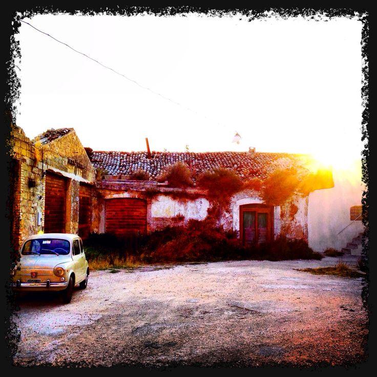 Apricena - vintage sunrise