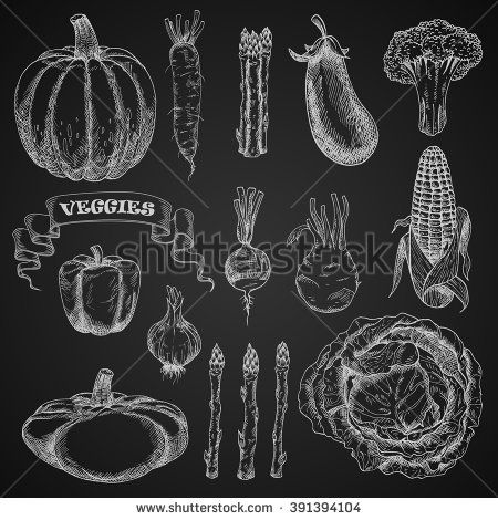 Chalk sketches of cabbage, broccoli and bell pepper, corn cob and eggplant, pumpkin and beet, garlic and asparagus, kohlrabi and pattypan, squash and daikon vegetables on chalkboard