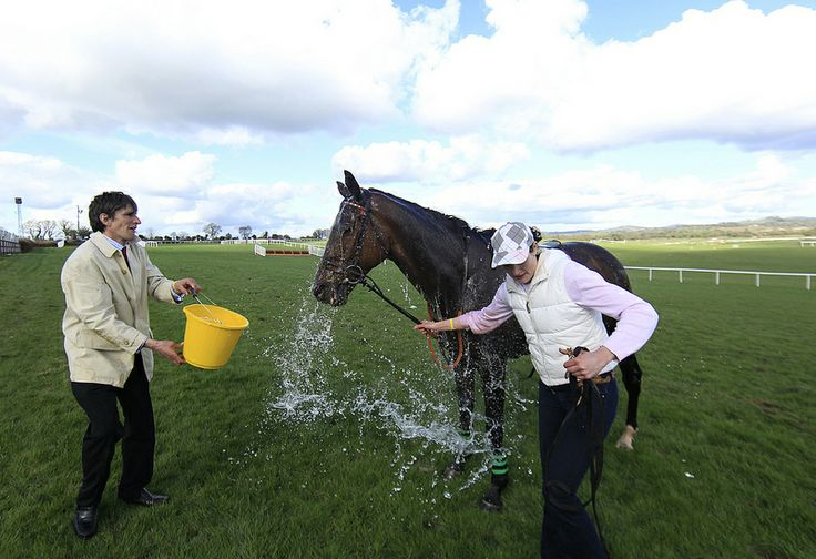 Trainer Peter Maher throws a bucket of water over big Shu and partner Caroline Woods to cool them down after winning the La Touche Cup Punchestown Festival