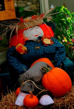 The Scarecrows have arrived!  @Peddler's Village kicks off two months of fall family-fun as scarecrows take over their 42-acre shopping village!