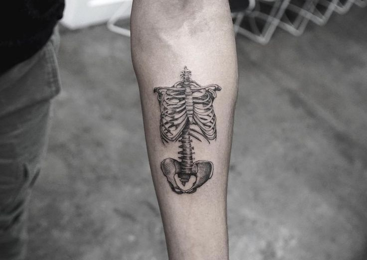 black and grey skeleton torso tattoo on the arm