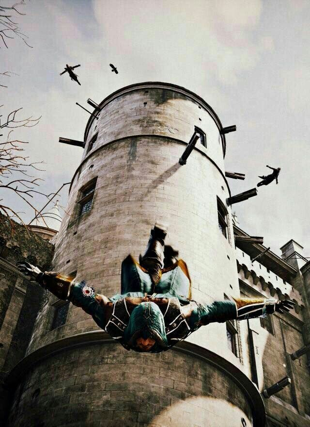 Assassin's can fly