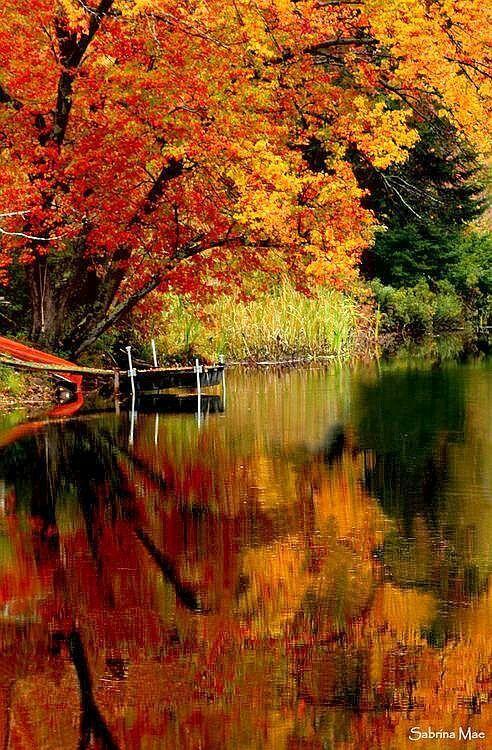 The Inviting ,Breathtaking Beauty of Autmn!!!!