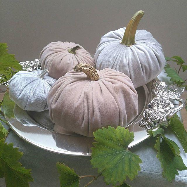 Pierwsza niedziela jesieni z welurowymi dyniami własnej roboty 😄 Miłego popołudnia!!🍃🌞 #jesień #dynie #robótki #welur #ozdoby #diy #falldecor #pumpkins #velour #pumpkinmaniaclara #homedecor #sundayfunday #weekendfun #inspiration #decor #fallinspiration #tabledecor