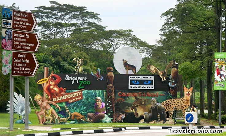 Cool The Wonder Behind Singapore Zoo | Swiss Hotel Singapore picture #Singapore #Zoo