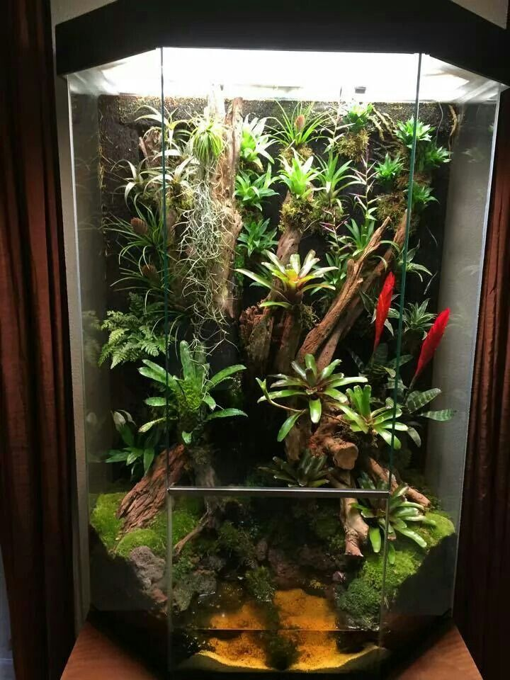Glass Window Greenhouse